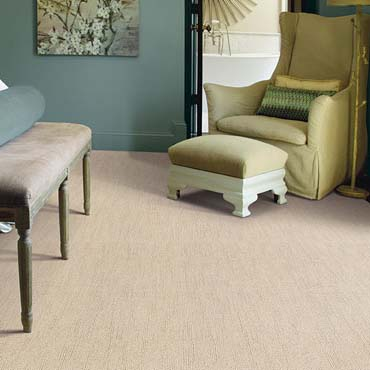 Caress Carpet by Shaw | Stover, MO